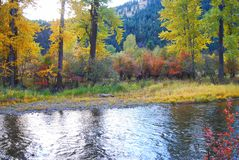 Rock Creek, Montana, cores da queda Fotografia de Stock Royalty Free