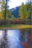 Rock Creek, Montana, cores da queda Fotografia de Stock