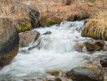 Rock Creek in the Owens Valley Royalty Free Stock Images