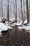 Rock Creek park at Winter Royalty Free Stock Photos