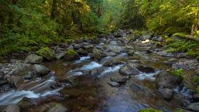 Rock Creek Timelapse of flowing creek pacific north westg