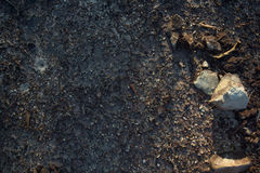 Rock crevice on the ground Stock Photography
