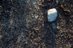 Rock crevice on the ground.  Stock Photography