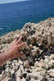 Rock in Croatia Royalty Free Stock Photos