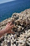Rock in Croatia Royalty Free Stock Photo