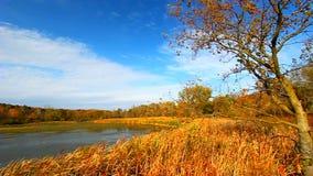 Rock Cut State Park Illinois stock video footage