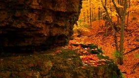 Rock Cut State Park Illinois stock footage