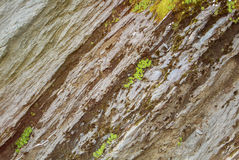 Rock cut texture and green alpine grass on the top of the mounta Stock Photo