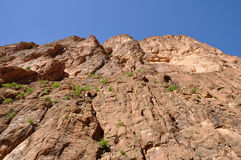 Rock in Dades Gorge, Morocco Royalty Free Stock Image