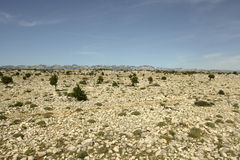 Rock Desert. (Croatia Island Pag Royalty Free Stock Images