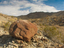 Rock in the desert with mountains and cactus Royalty Free Stock Images