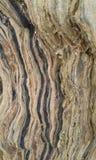 Rock detail. Fodele. Crete. Greece Royalty Free Stock Image