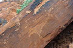 Rock drawing Twyfelfontein, Namibia Royalty Free Stock Photo