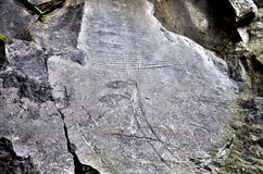 Rock Drawings in Valcamonica -  capital 2 pines 2 Royalty Free Stock Images