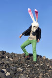 Rock easter rabbit in geometric mask. Stock Images