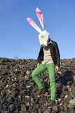 Rock easter rabbit in geometric mask. Royalty Free Stock Photos
