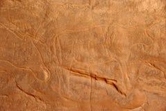 Rock engraving, Libya Royalty Free Stock Images