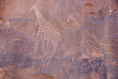 Rock engraving, Libya Royalty Free Stock Photos