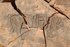 Rock engraving, Libya Royalty Free Stock Photography