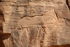 Rock engraving, Libya Royalty Free Stock Images