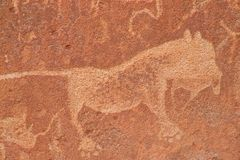 Rock engravings Stock Images