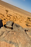 Rock Engravings Near Wadi Mathendous (UNESCO) Royalty Free Stock Photo