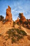 rock för nationalpark för brycekanjonbildande royaltyfria bilder