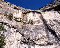 Rock face, Malham Cove, Yorkshire Dales. Royalty Free Stock Photo