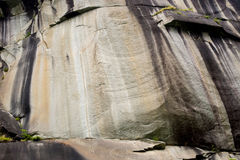 Rock face. Natural rock wall with black, grey and ochre weathering striations, small plants growing from crevices Royalty Free Stock Image