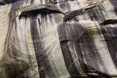 Rock face. Natural rock wall with black, grey and ochre weathering striations, small plants growing from crevices Royalty Free Stock Images