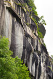 Rock face. Natural rock wall with black, grey and ochre weathering striations, small plants growing from crevices wall, side view, sky background Stock Photo