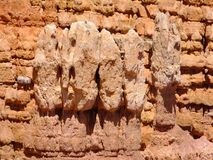 Rock Faces. Natural face like figures shaped and worn in the red rock at Paria View, Bryce Canyon National Park, Utah royalty free stock photo