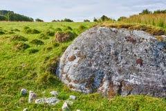 Rock in Field Stock Image