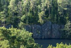 Firs growing on a rock and approaching a cliff. Tilt-Shift effect royalty free stock photos