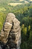 Rock and Forest. Rock in the Mountains of the Swiss Saxony Royalty Free Stock Photography