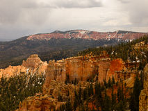 Rock and Forest Bryce Canyon. Bryce Canyon is a giant natural amphitheater along the Paunsaugunt Plateau created from millions of years of erosion Stock Images