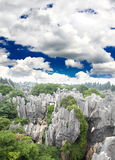 Rock forest near Kunming city Royalty Free Stock Image