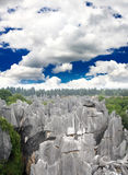 Rock forest near Kunming city Stock Images