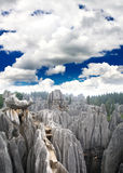 Rock forest near Kunming city Stock Photos