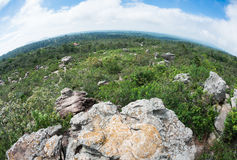 Rock in forest at Pa Hin Ngam National Park, Chaiyaphum Province Stock Photography