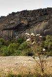 Rock formation basalt columns Symphony of the Stones near Garni, Royalty Free Stock Images
