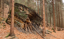 Rock formation in Bohemian Switzerland Stock Photos
