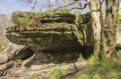 Rock formation at Brimham Rocks, North Yorkshire, England, UK. Royalty Free Stock Photo