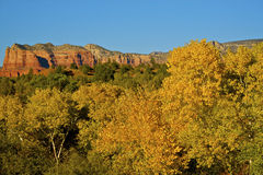 Rock Formation and Fall Foliage. Red rock formation and fall foliage near Sedona, Arizona Royalty Free Stock Photo