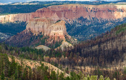 Rock formation and forest after wildfire in Bryce Canyon NP Royalty Free Stock Images