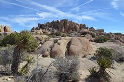 Rock formation in Joshua Tree National Park, CA stock images