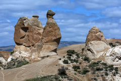 A rock formation known as 'The Camel at the Devrent Valley in the Cappadocia region of Turkey. Royalty Free Stock Images