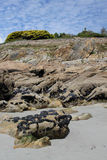 Rock formation with Mussels, Brittany, France Royalty Free Stock Photos