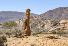 Rock formation in Namibia. Sunny illuminated landscape including a rock formation seen in Namibia, Africa Stock Image