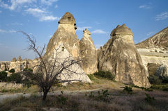 Rock Formation Pasabagi Cappadocia, Turkey Royalty Free Stock Photography